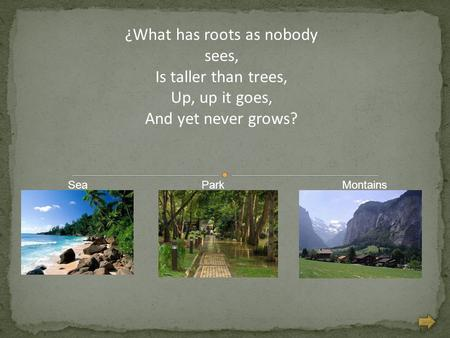 ¿What has roots as nobody sees, Is taller than trees, Up, up it goes, And yet never grows? MontainsParkSea.