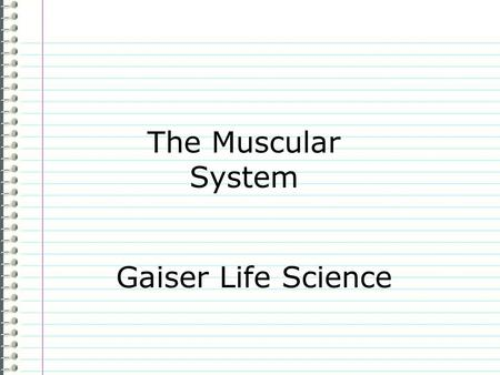 The Muscular System Gaiser Life Science.