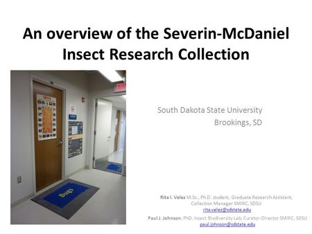An overview of the Severin-McDaniel Insect Research Collection South Dakota State University Brookings, SD Paul J. Johnson, PhD. Insect Biodiversity Lab,