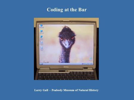 Coding at the Bar Larry Gall -- Peabody Museum of Natural History.