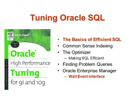 Tuning Oracle SQL The Basics of Efficient SQLThe Basics of Efficient SQL Common Sense Indexing The Optimizer –Making SQL Efficient Finding Problem Queries.