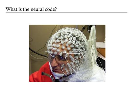 What is the neural code?. Alan Litke, UCSD Reading out the neural code.