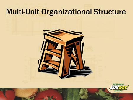 Multi-Unit Organizational Structure. Objective To Implement a Multi-Unit Organizational Structure that will maximize efficiency and potential profitability.