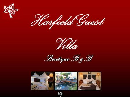 Harfield Guest Villa Boutique B &B. Cape Towns Best Kept Secret… …Spectacular views Harfield Guest Villa Boutique B & B.