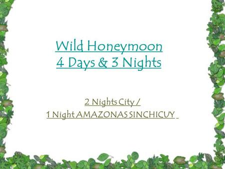 Wild Honeymoon 4 Days & 3 Nights 2 Nights City / 1 Night AMAZONAS SINCHICUY.
