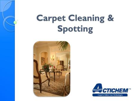 Carpet Cleaning & Spotting