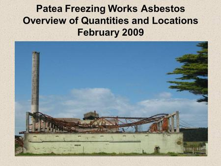Patea Freezing Works Asbestos Overview of Quantities and Locations February 2009.