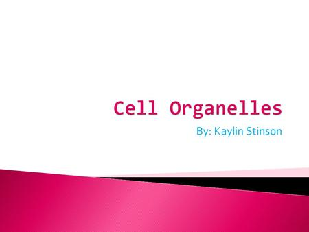 Cell Organelles By: Kaylin Stinson.