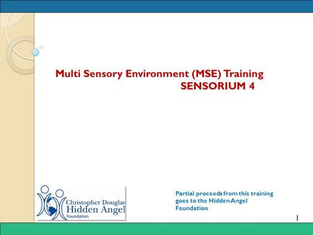 1 Multi Sensory Environment (MSE) Training SENSORIUM 4 Partial proceeds from this training goes to the Hidden Angel Foundation.