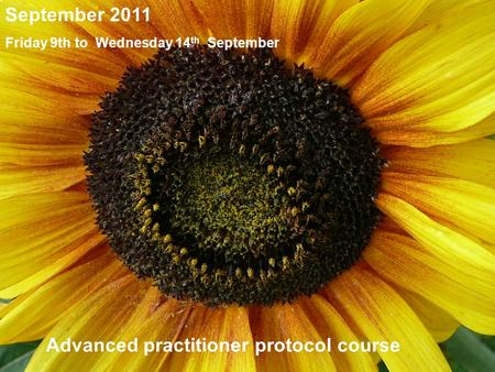 Friday 12th Sept to Wednesday 17th Sept 2008 Inclusive PHYTOBIOPHYSICS® 2008 The Mossop Philosophy September Course Jersey Train the trainers 12 th -17.