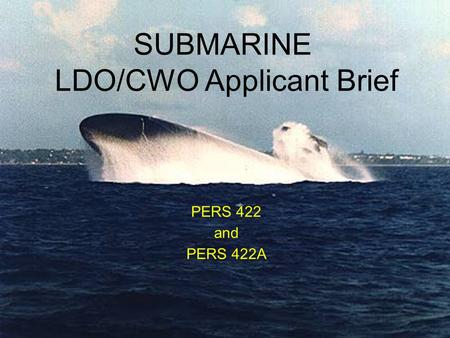 LDO/CWO Applicant Brief