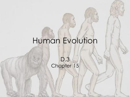 Human Evolution D.3 Chapter 15. D.3.1: Outline a method for dating rocks and fossils using radioisotopes, with reference to 14 C and 40 K Fossils, or.