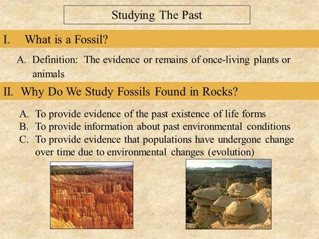 II. Why Do We Study Fossils Found in Rocks? I.What is a Fossil? A. Definition: The evidence or remains of once-living plants or animals A.To provide evidence.