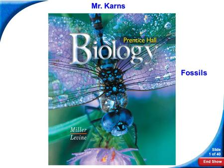 End Show Slide 1 of 40 Biology Fossils Mr. Karns.