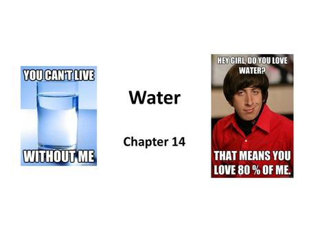 Water Chapter 14.
