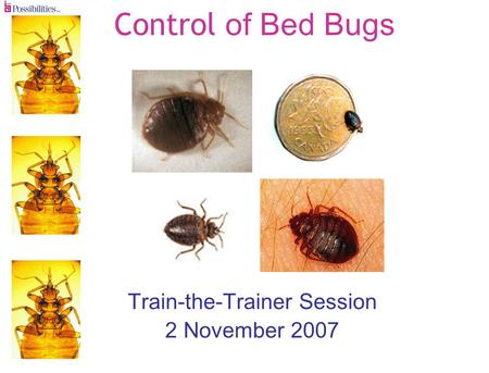 Control of Bed Bugs Train-the-Trainer Session 2 November 2007.