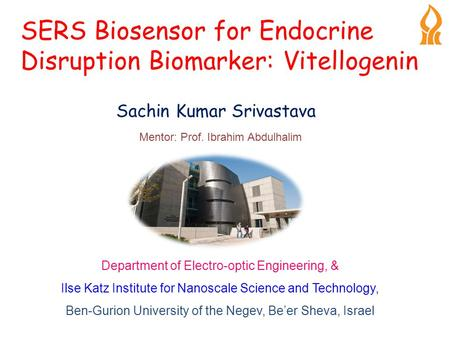 SERS Biosensor for Endocrine Disruption Biomarker: Vitellogenin