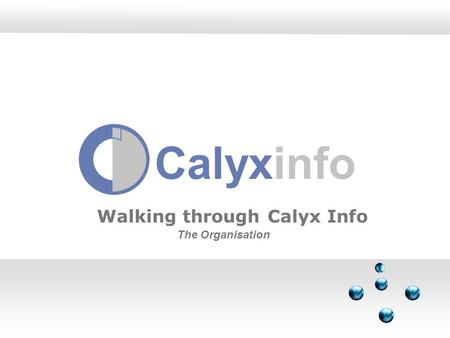 Calyxinfo Walking through Calyx Info The Organisation.