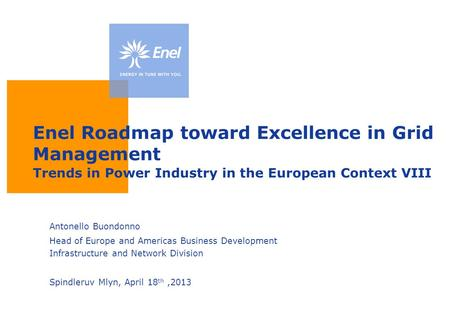 Enel Roadmap toward Excellence in Grid Management Trends in Power Industry in the European Context VIII Antonello Buondonno Head of Europe and Americas.