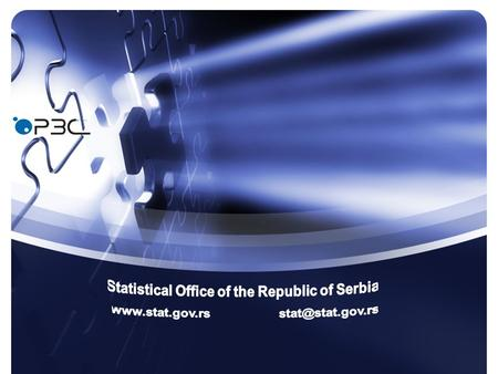 Users Satisfaction with Statistical Information and services, 2010 Results of the Survey.