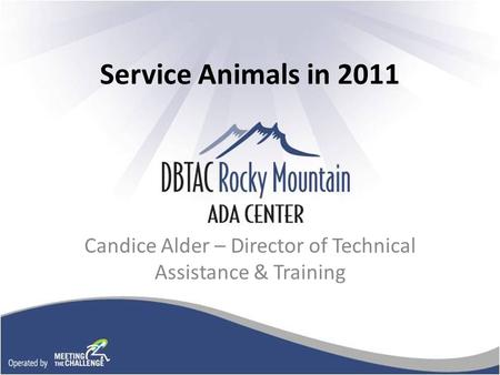 Service Animals in 2011 Candice Alder – Director of Technical Assistance & Training.