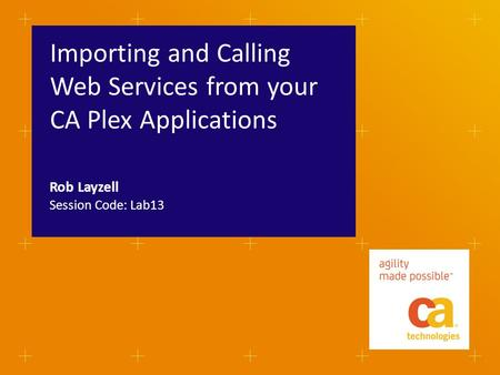 Importing and Calling Web Services from your CA Plex Applications Session Code: Lab13 Rob Layzell.