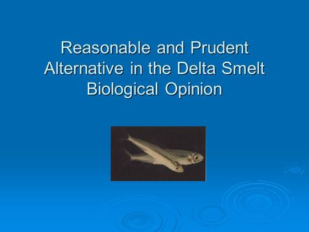 Reasonable and Prudent Alternative in the Delta Smelt Biological Opinion.