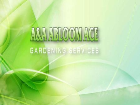 Perfect Landscaping Services in Hornsby