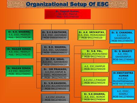 Organizational Setup Of ESC
