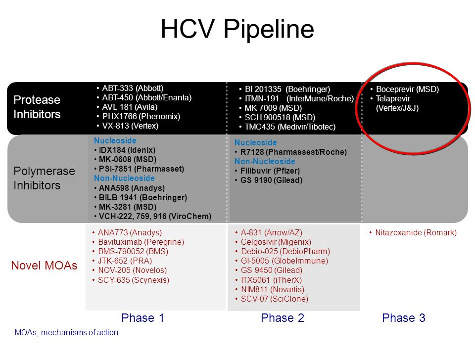 HAART And New Anti HCV Drugs Interactions