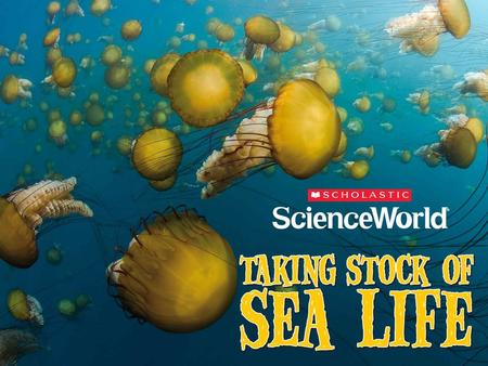 Sea Nettles Marine biologists from more than 80 countries have spent the last 10 years trying to catalogue and count all forms of sea life. The project,