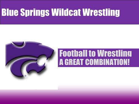 Blue Springs Wildcat Wrestling