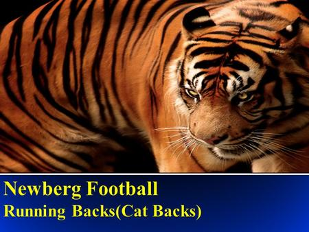 What makes a Cat Back? He must be BRAVE Ball Security Rock Solid Blocker Ability to avoid and break tackles Vision Expects to work for success.
