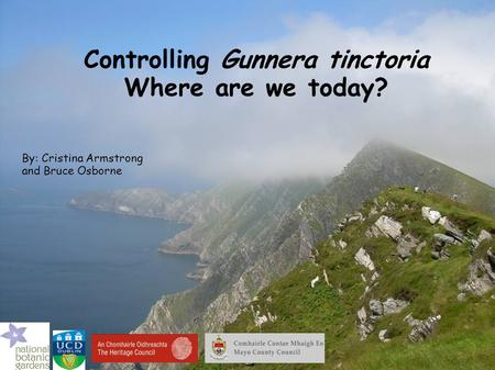 Controlling Gunnera tinctoria Where are we today? By: Cristina Armstrong and Bruce Osborne.