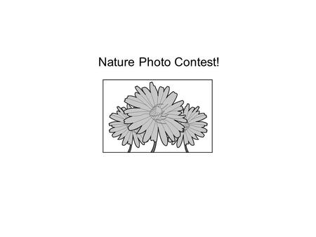 Nature Photo Contest!. 1 Which idea is best supported by the information in the section Additional Information? Ο A. Photos will be displayed for one.