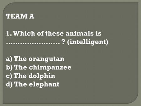 TEAM A 1. Which of these animals is ………………….. ? (intelligent) a) The orangutan b) The chimpanzee c) The dolphin d) The elephant.