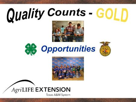 Opportunities. Overview Importance of extracurricular activities to young people Opportunities available for young people in agriculture Defining success.
