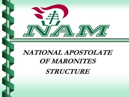 NATIONAL APOSTOLATE OF MARONITES STRUCTURE. Organizational Chart.