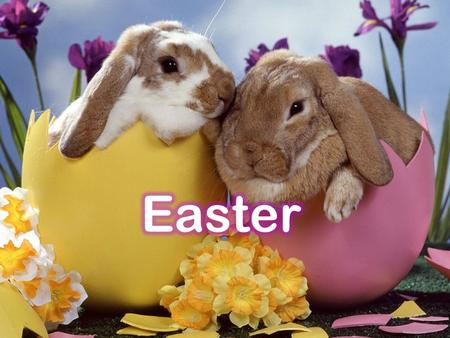 What is Easter ( ) ? Easter is a spring ( ) holiday and a Christian holiday. baby animals bunnies flowers.