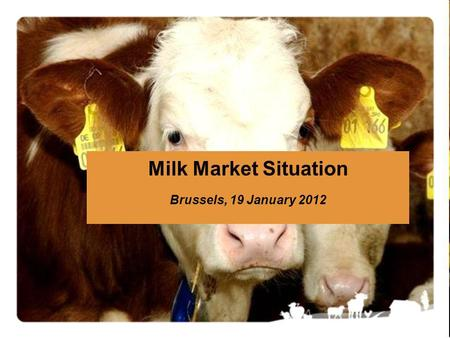 Milk Market Situation Brussels, 19 January 2012. Market Situation – 19 January 20122 !!! Data from some Member States are confidential and are NOT included.