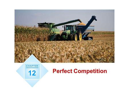 Perfect Competition 12.