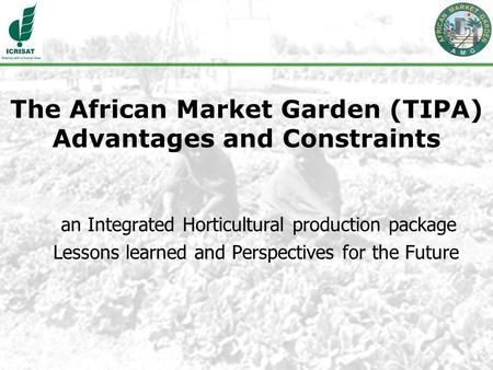 The African Market Garden (TIPA) Advantages and Constraints an Integrated Horticultural production package Lessons learned and Perspectives for the Future.