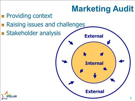 1 Marketing Audit Internal External Providing context Raising issues and challenges Stakeholder analysis.