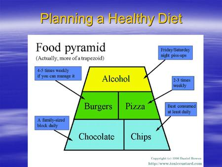 Planning a Healthy Diet. Diet Principles and Dietary Guidelines these two items should be considered each time we make a choice of what goes into our.