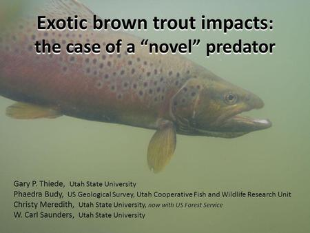 Exotic brown trout impacts : the case of a novel predator Gary P. Thiede, Utah State University Phaedra Budy, US Geological Survey, Utah Cooperative Fish.