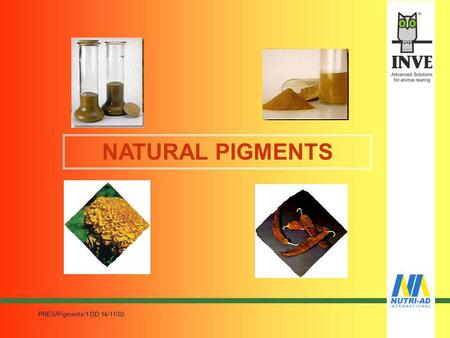 PRES/Pigments/1 DD 14/11/02 NATURAL PIGMENTS PRES/Pigments/1 DD 14/11/02 PIGMENTATION ORIGINATED HISTORICALLY The visual appearance is an important characteristic.