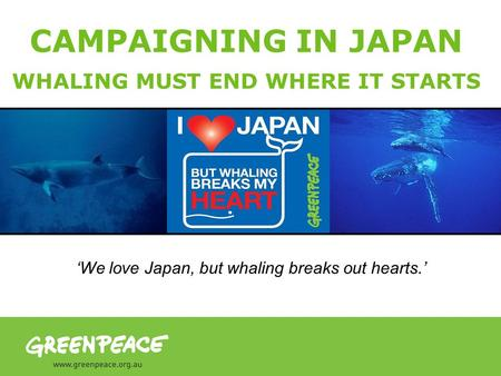 CAMPAIGNING IN JAPAN WHALING MUST END WHERE IT STARTS We love Japan, but whaling breaks out hearts.
