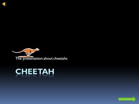 The presentation about cheetahs. Main Menu Quick facts about cheetahs Scientific classification Kingdom:Animalia Phylum:Chordata Class:Mammalia Family:Felidae.