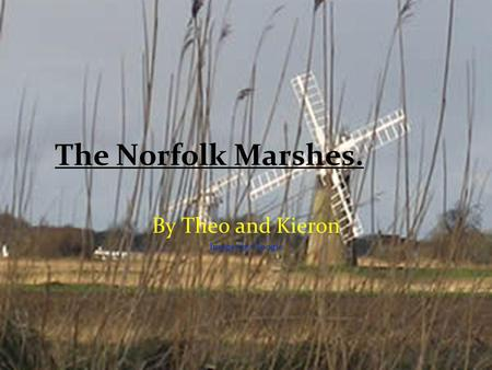 The Norfolk Marshes. By Theo and Kieron Images by Google.