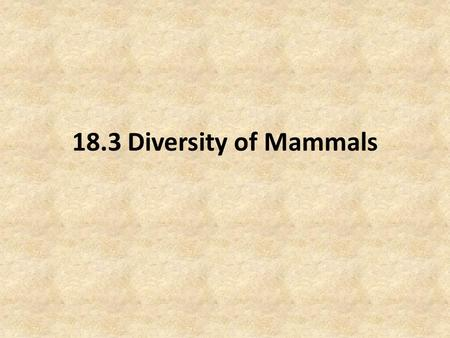 18.3 Diversity of Mammals. Objectives Distinguish between egg-laying, pouched, and placental mammals. Infer why most egg-laying and pouched mammals live.